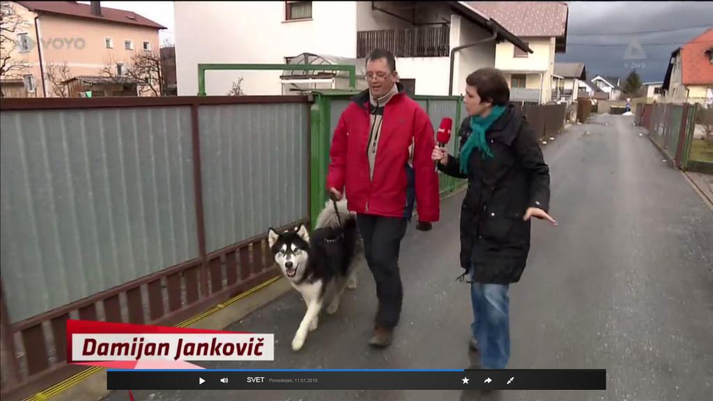 Novinarka, ki je Damijana ustavila na cesti med sprehajanjem psa, je bila veselo presenečena, ko je ugotovila, da je prav on pomagal preprečiti nakane vlomilcema. Seveda pa ni pomislila, da je tudi on varnostnik v Sintalu, prav tako kot interventi iz drugega dela njenega prispevka.